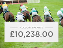 Horses running in a race with a large account balance next to them