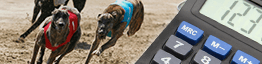 Greyhounds running and a calculator