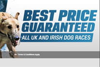 shawfield dogs betting calculator