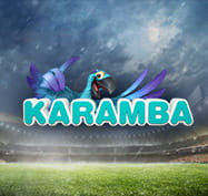 Baseball image with the Karamba logo
