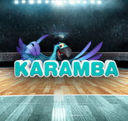 Volleyball court with Karamba logo
