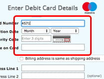 Enter card details using Maestro