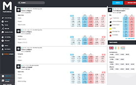 A view of the matchbook sports betting portal