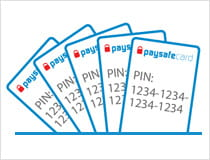 Five PIN cards all stored in one place
