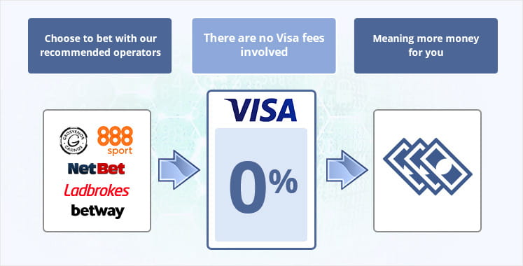 Infographic depicting fees associated with using Visa