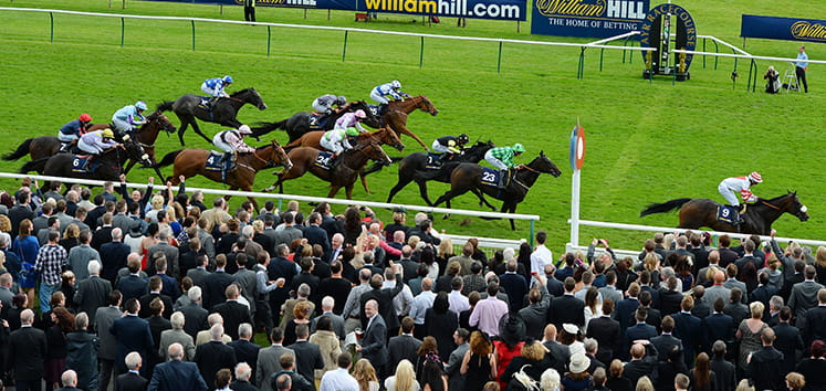 The Ayr Gold Cup in Action.