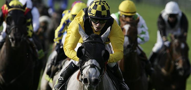 cesarewitch-handicap-preview