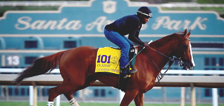 breeders-cup-preview