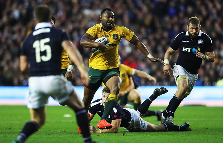 Scotland fail to enact revenge over the Wallabies in the 2016 autumn tests