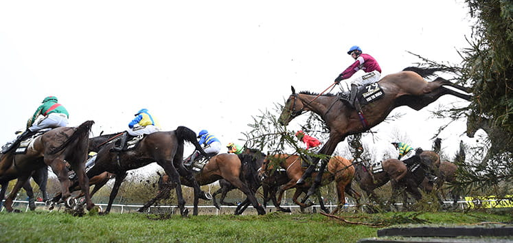 Grand National 2016