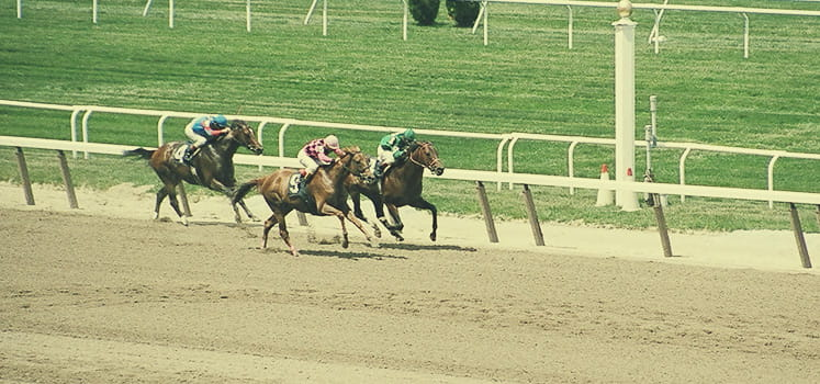 Belmont Stakes Feature Image
