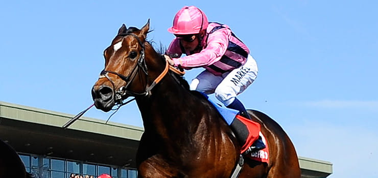 John of Gaunt Stakes Feature Image