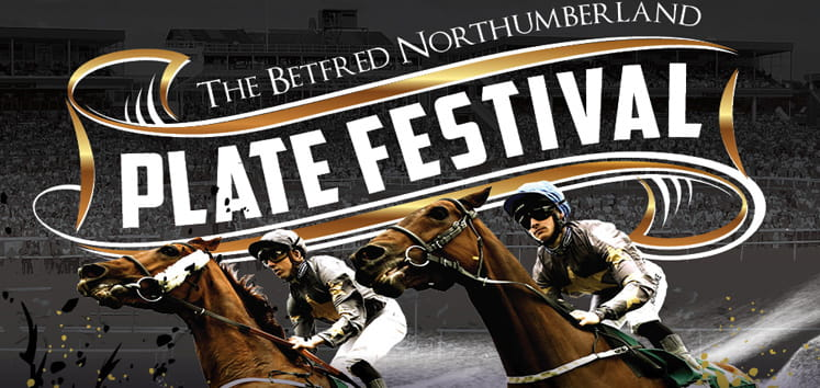 northumberland preview