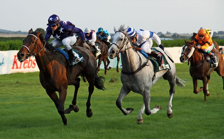 The coral eclipse bettingadvice betting spreads nfl