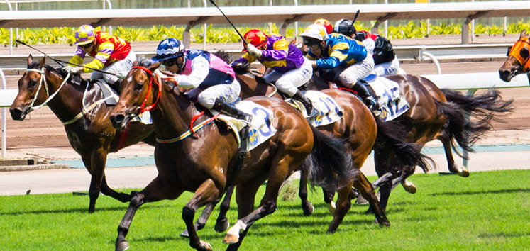 coral stakes preview
