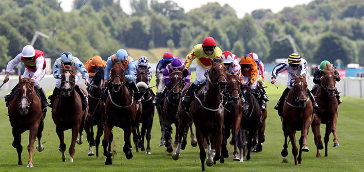 the ebor race is at york this weekend