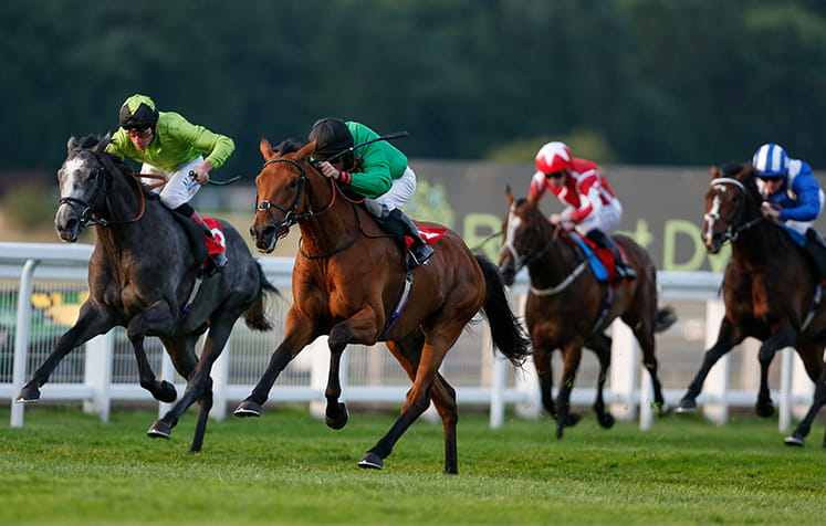Sandown Park Atalanta Stakes takes place this weekend
