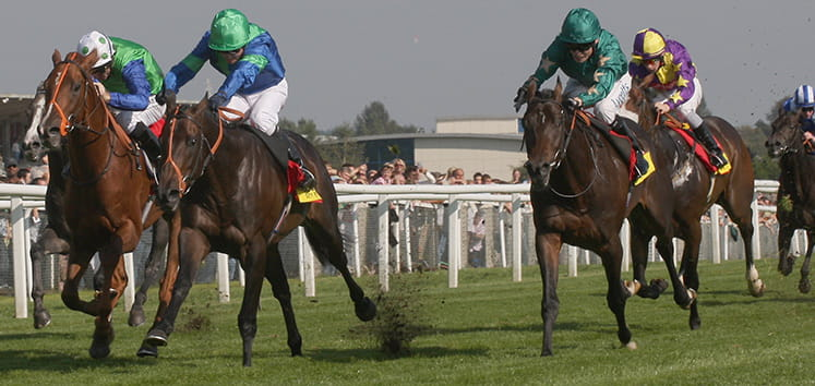 Mill Reef Preview Stakes