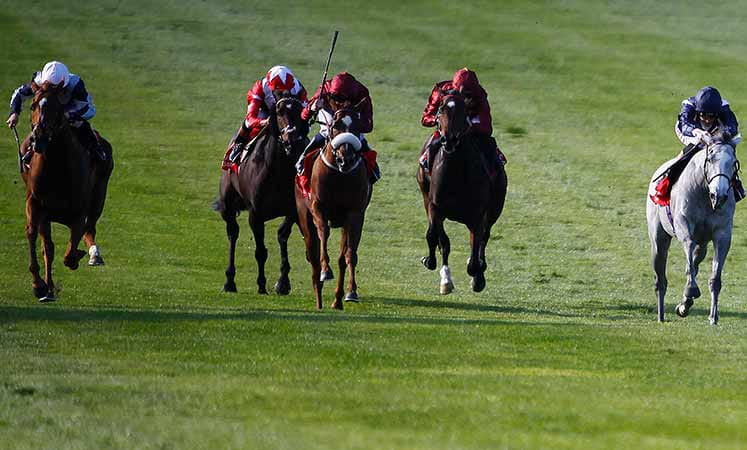 Horses racing in the Sun Chariot Stakes at Newmarket