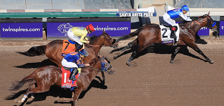 Three horses running at the Breeders Cup.