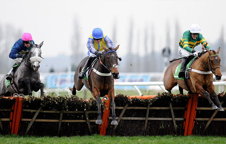 Three horses taking part in the Fighting Fifth Hurdle