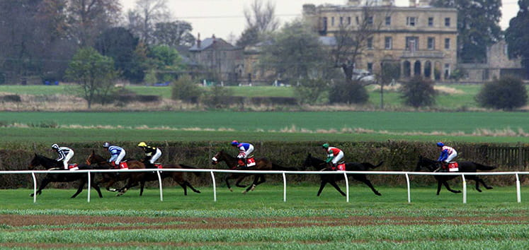 Six horses running at Wetherby racecourse.