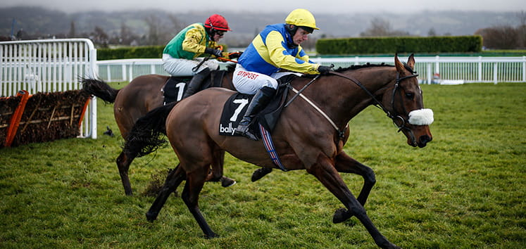 Two horses racing at Cheltenham