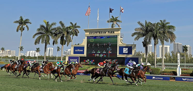 Running pack at the Pegasus World Cup