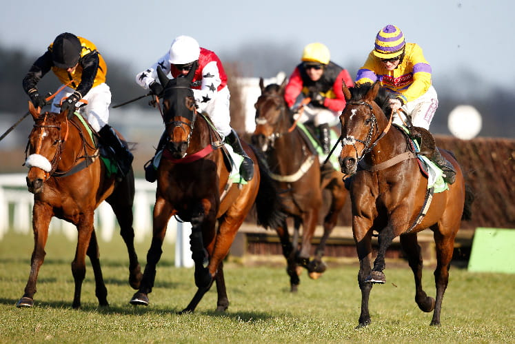 Horses on the final straight at Lingfield Park