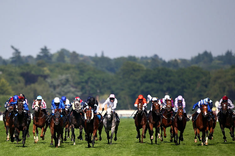 A crowd of horses on the final straight at Sandown