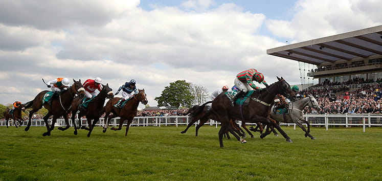 Horses racing to the finish at the bet365 Gold Cup