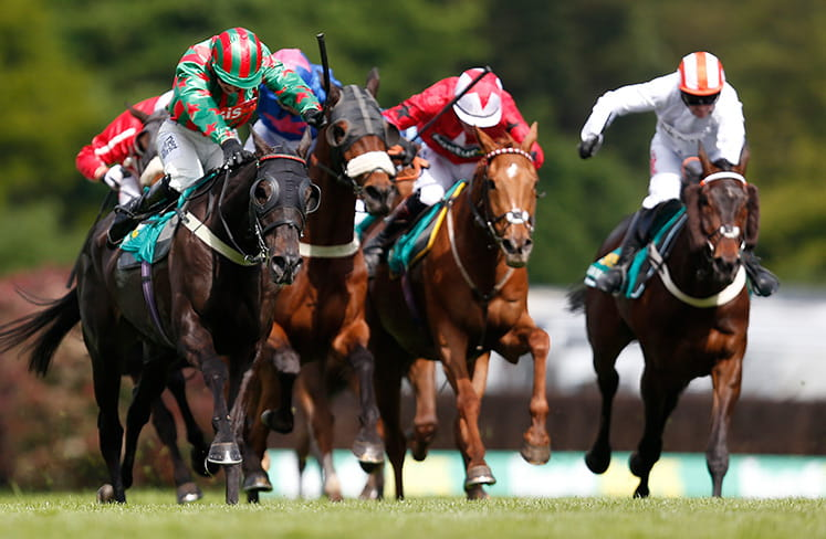 Close up of horses racing at the bet365 Gold Cup