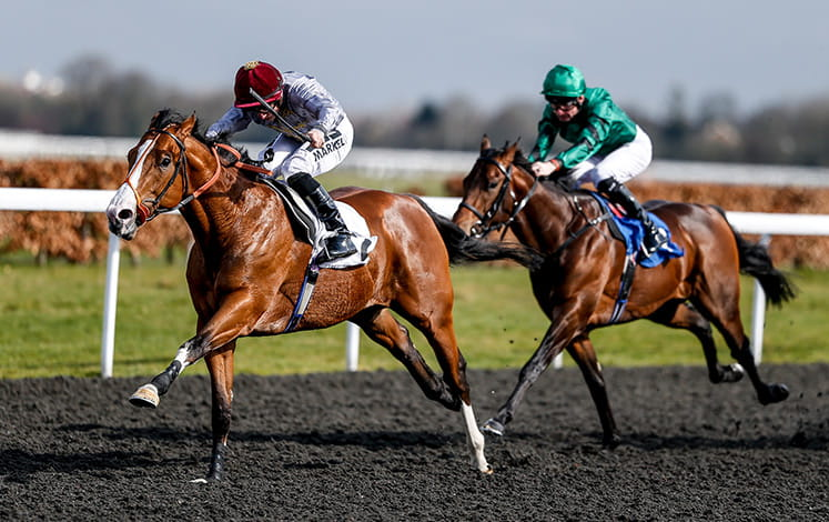 Two horses neck and neck at the Kempton track