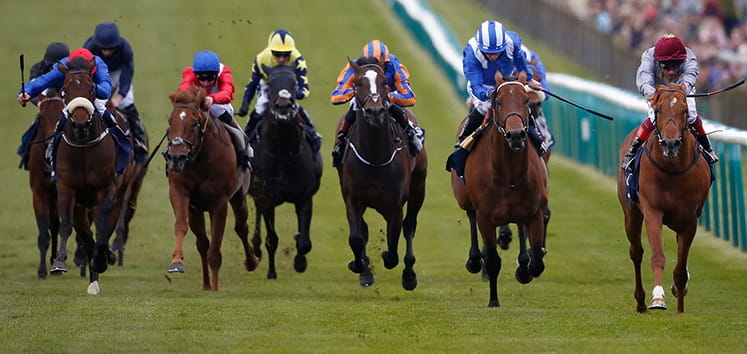 Horses galloping to the finish at Newmarket
