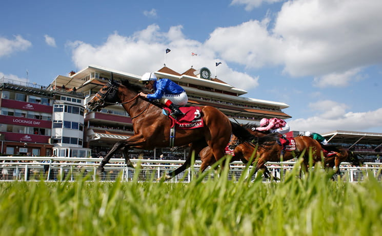 Two horses at Lockinge Stakes