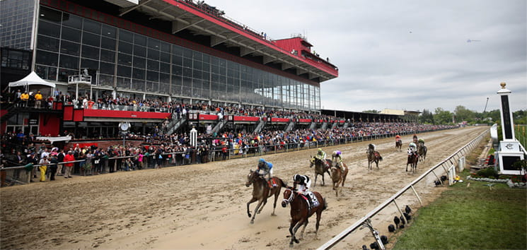 Lots of horses racing at Pimlico