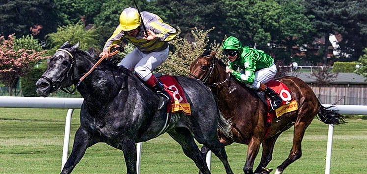 Two horses race in the Temple Stakes