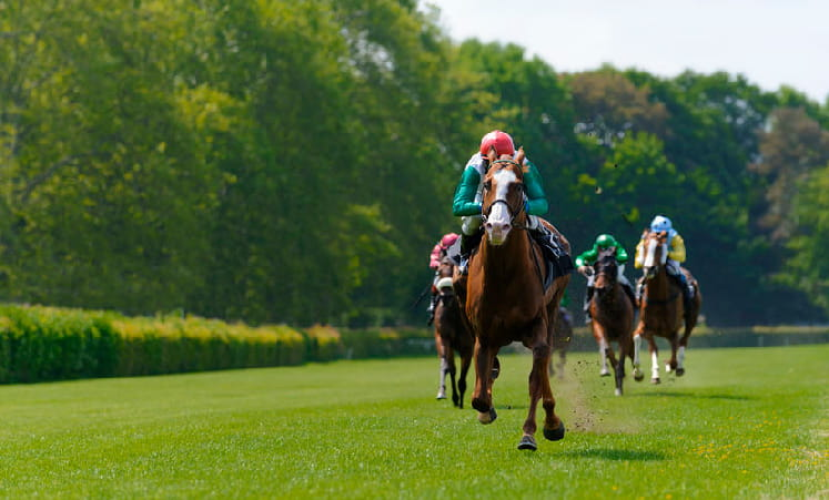 Horses racing to the finish in the temple stakes