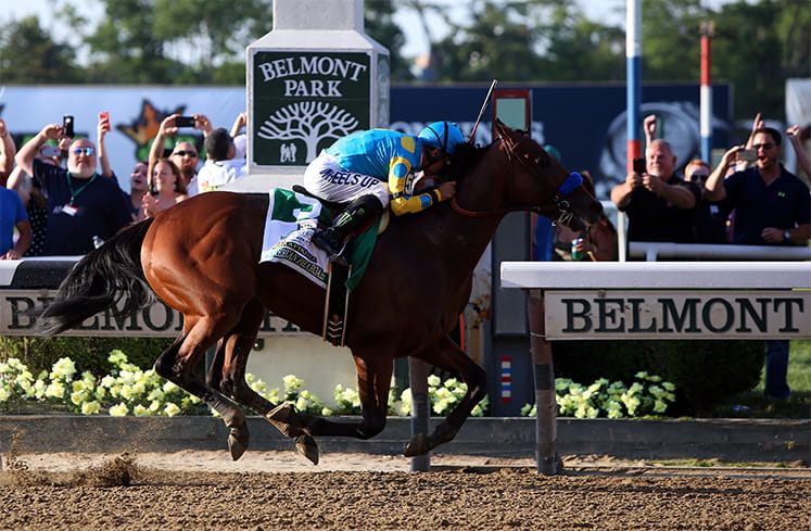 One horse running at the Belmont Stakes
