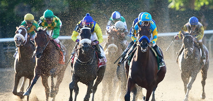 Several horses running at the Belmont Stakes