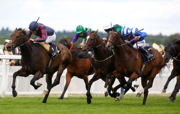 Five horses running at the Diamond Jubilee stakes