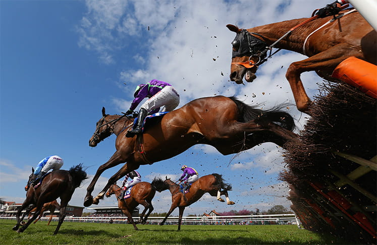 Five horses jumping at Haydock Park