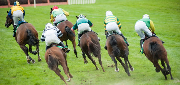 Horses galloping at the Irish Derby