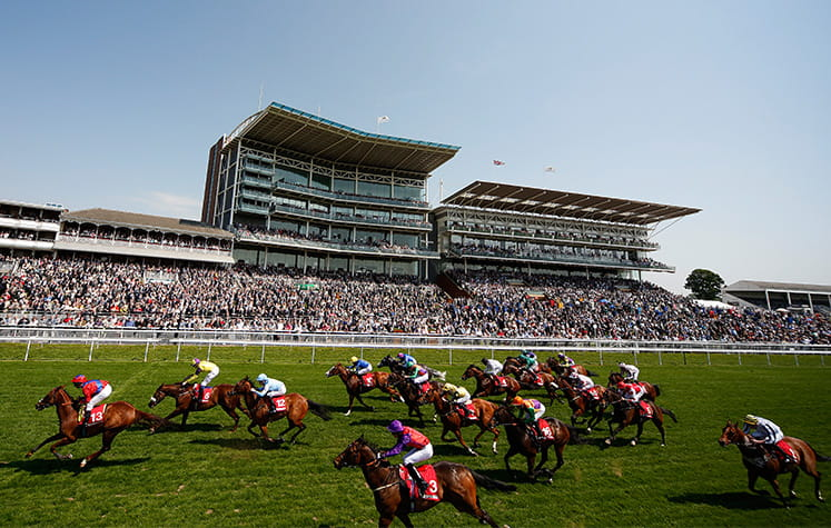 Several horses running at York racetrack