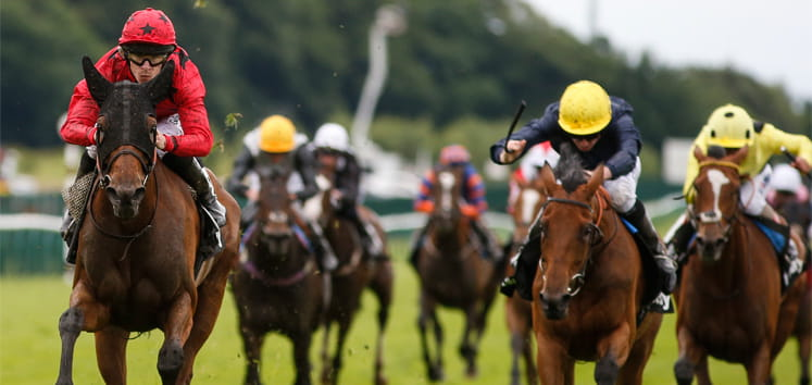 Horses racing to the finish at Haydock Park