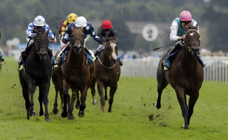 Horses galloping at the Champagne Stakes