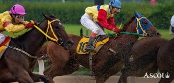 Horses racing at Ascot