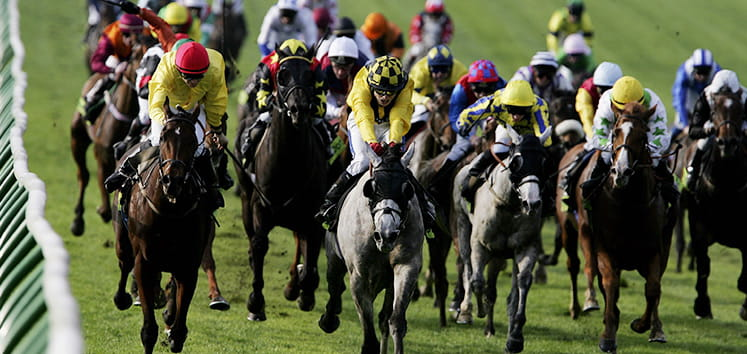 A group or horses racing at Newmarket.