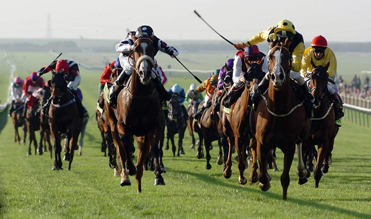 Head on shot of horses racing to the finish at Newmarket.