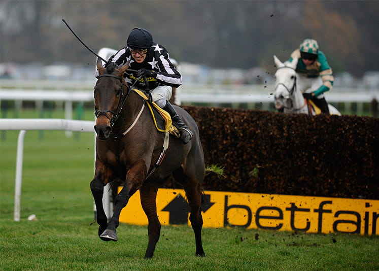 Horses racing at Betfair chase haydock, with a fence in the background